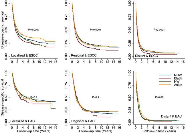 Comparison of disease-specific survival (DSS) rates by different racial/ethnic groups adjusted by stage and tumor histology.