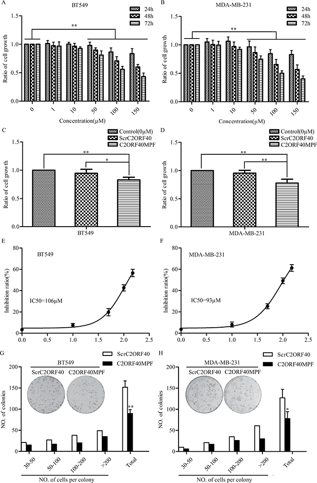 The effect of C2ORF40MPF on the growth of human breast cancer cells.