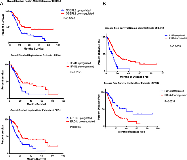 Kaplan-Meier analysis of overall survival, disease-free survival and median month's survival.