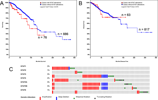 STAT genes expression and mutation analysis in breast invasive carcinoma (cBioPortal).