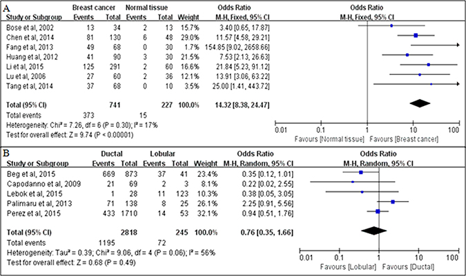 Associations between PTEN loss and breast cancer development, as evaluated in terms of odds ratios (ORs).