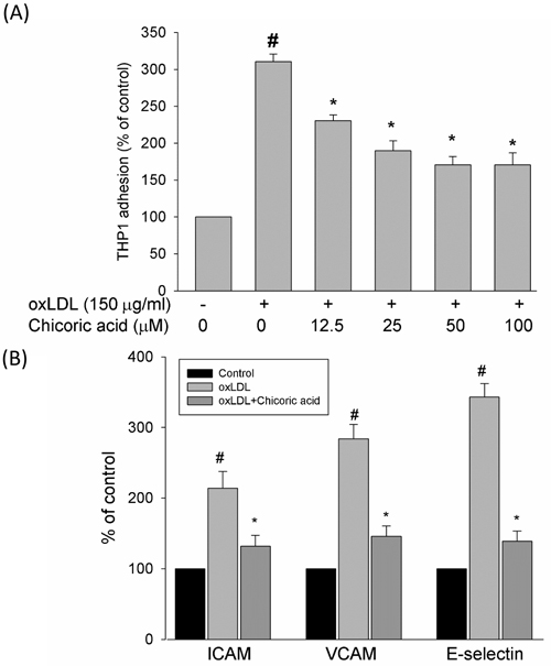 Effects of chicoric acid on oxLDL-induced adhesiveness of HUVECs to THP-1 monocytic cells and adhesion molecule expression.