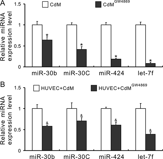 Exosomes mediate the transfer of miRs from MSCs to HUVECs.