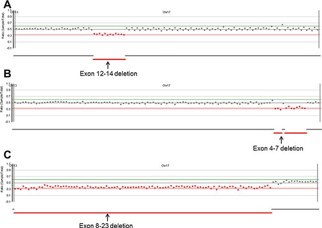 Copy number analysis plots from NextGENe software.