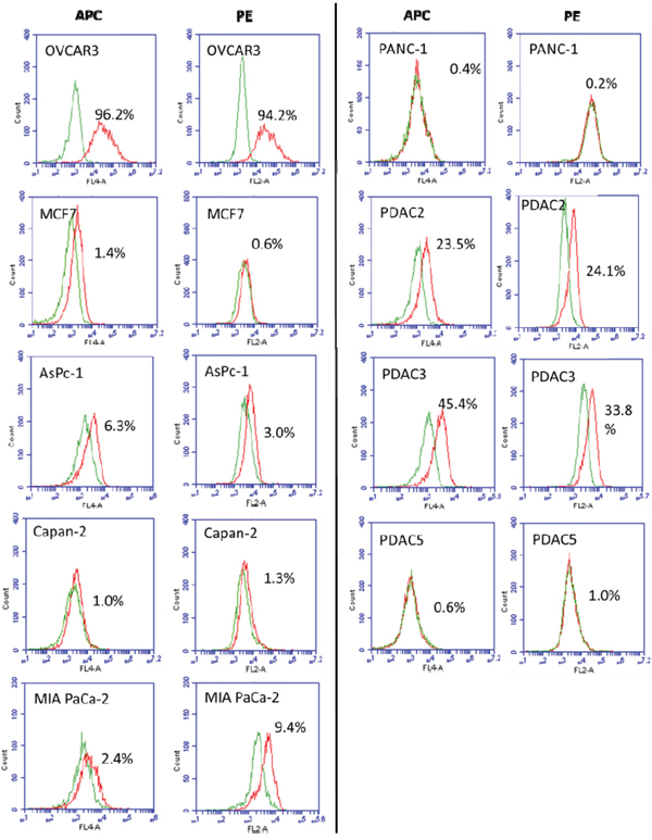 Analysis of FRα expression on human PDAC cell lines AsPC-1, Capan-2, MIA PaCa-2, PANC-1 PDAC2, PDAC3, and PDAC5.