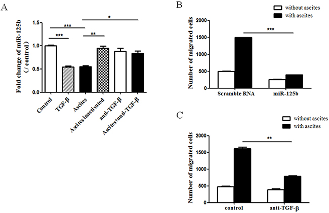 MiR-125b mediated ascites- and TGF-beta-induced ovarian cancer cell migration.
