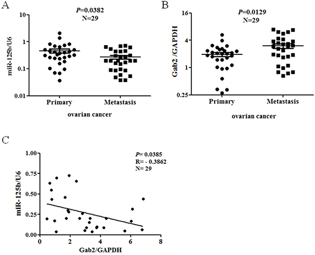 Correlation of miR-125b and Gab2 in ovarian cancer specimens.