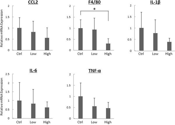 Effects of tofogliflozin on the expression levels of mRNA involved in inflammation in the liver of the experimental mice.