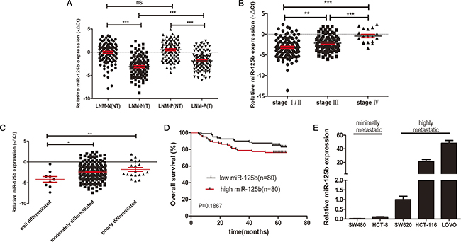 High expression level of miR125b was related to metastasis, advanced stages, poor differentiation and poor survival of CRC.
