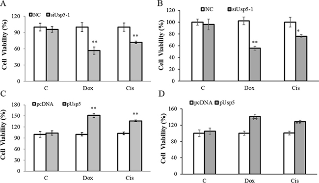 Usp5 promoted drug resistance in HepG2 cells.