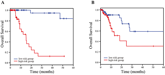 Kaplan-Meier estimation of overall survival of TCGA LUAD patients using the four-lncRNA signature.