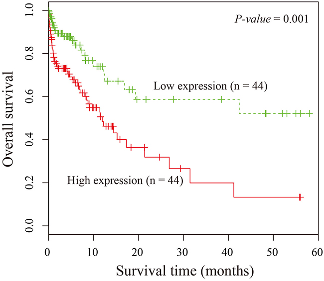 Kaplan-Meier survival curves of patients with LUAD based on SPRY4-IT1 expression.