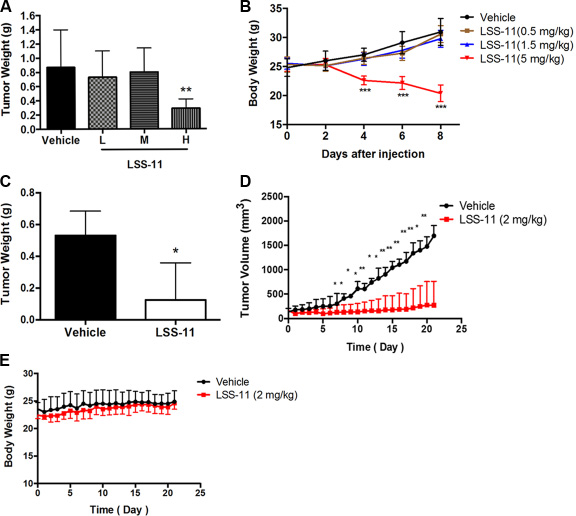 LSS-11 inhibits tumor growth