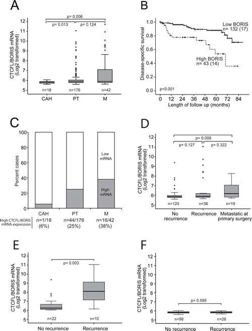 Increased CTCFL/BORIS mRNA expression level associates with cancer progression and poor survival.