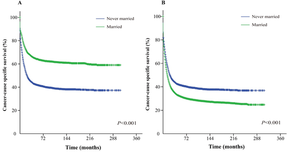 Kaplan-Meier survival curves: The cancer-caused specific survival of never married and married groups of matched and unmatched AML patients.