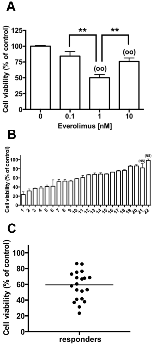 Everolimus decreases cell viability in primary cultures of human pNETs.
