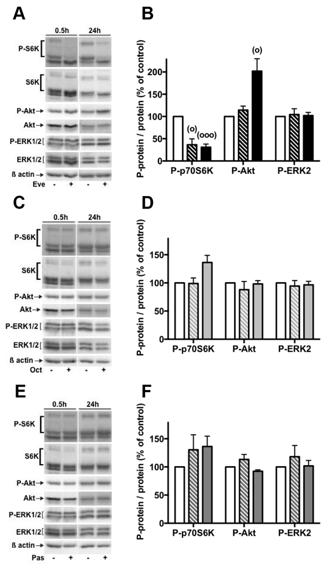 Effects of everolimus and the SSAs single treatments on the activity of the PI3K/Akt and MAPKinase ERK1/2 pathways.