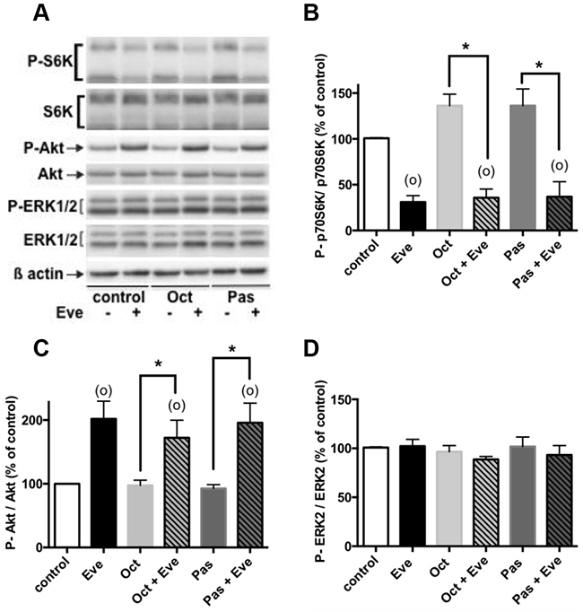 Effects of everolimus and the SSAs in combined treatments on the activity of the PI3K/Akt and MAPKinase ERK1/2 pathways.