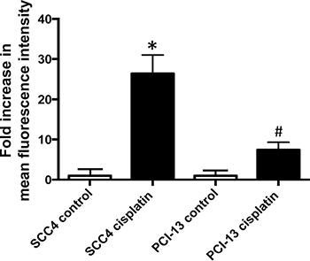 Cisplatin increases ALDH activity in HNSCC.