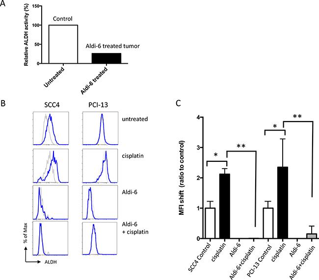 Aldi-6 inhibits ALDH activity in HNSCC.