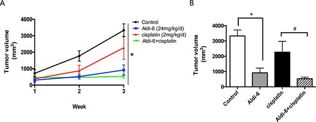 Aldi-6 reduces HNSCC tumor growth rate in vivo.