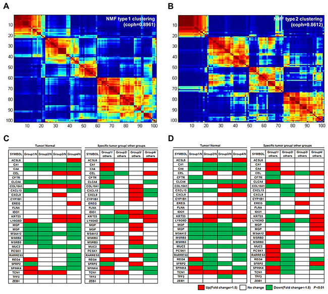 Four molecular subtypes identified using consensus clustering-based NMF.