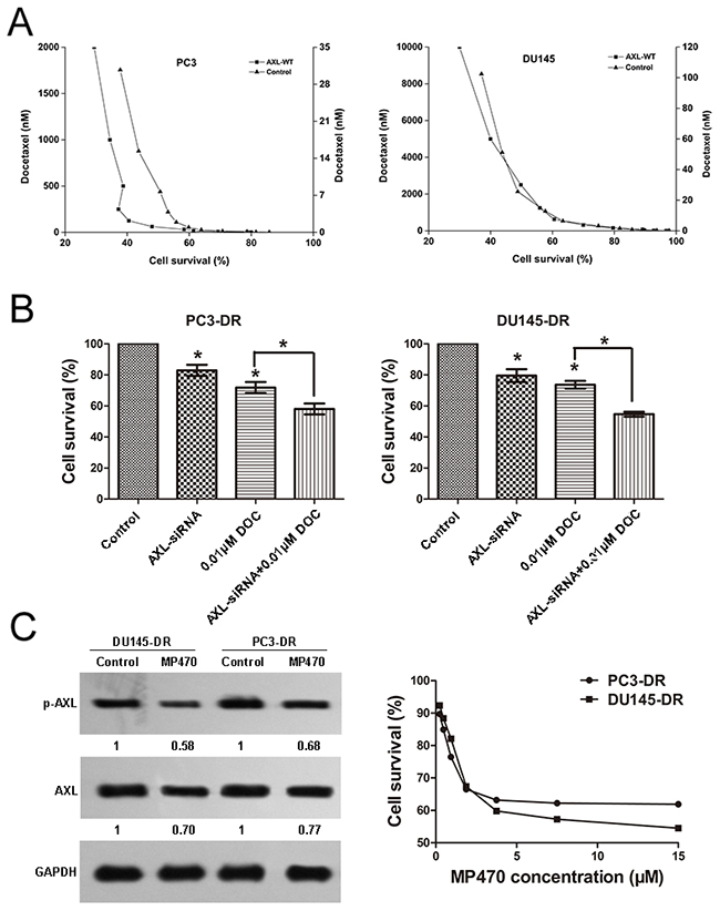 Resistance to docetaxel in prostate cancer cells is associated with AXL.