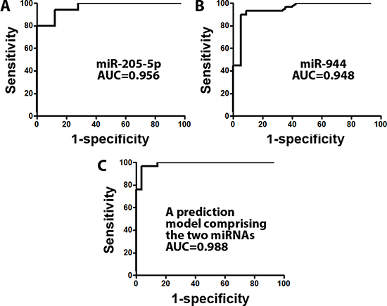 A prediction model based on two miRNAs (miRs-205-5p and 944) was developed for distinguishing SCC from AC in frozen lung tumor tissues.