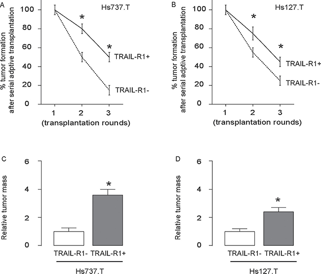 The highest occurrence of tumor formation was detected after serial adoptive transplantation of TRAIL-R1+ GCT cells.