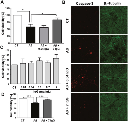 IgG protects cortical neurons against amyloid toxicity.