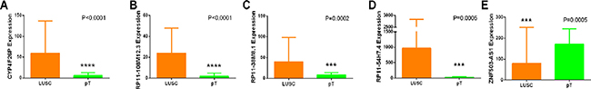 Different expression of the five key lncRNAs between LUSC and para-noncancerous lung tissues based on TCGA data.