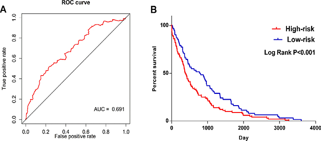ROC and Kaplan–Meier curves for the five lncRNAs signature in TCGA LUSC cohort.