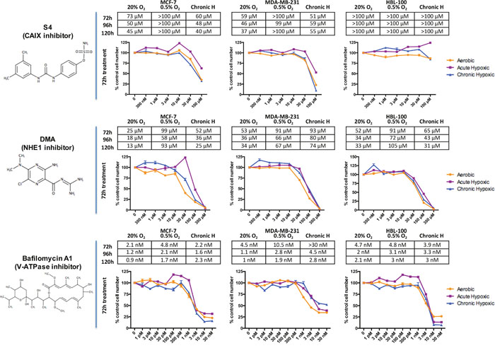 Oncotarget   Inhibition of pH regulation as a therapeutic