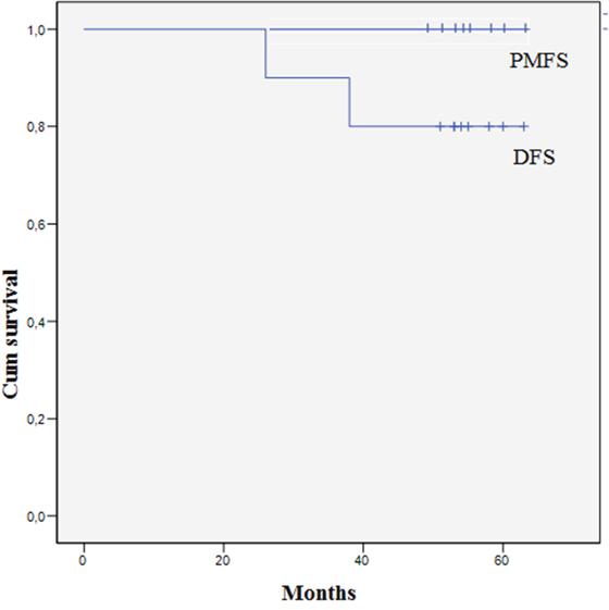 Disease free survival after adjuvant HIPEC.