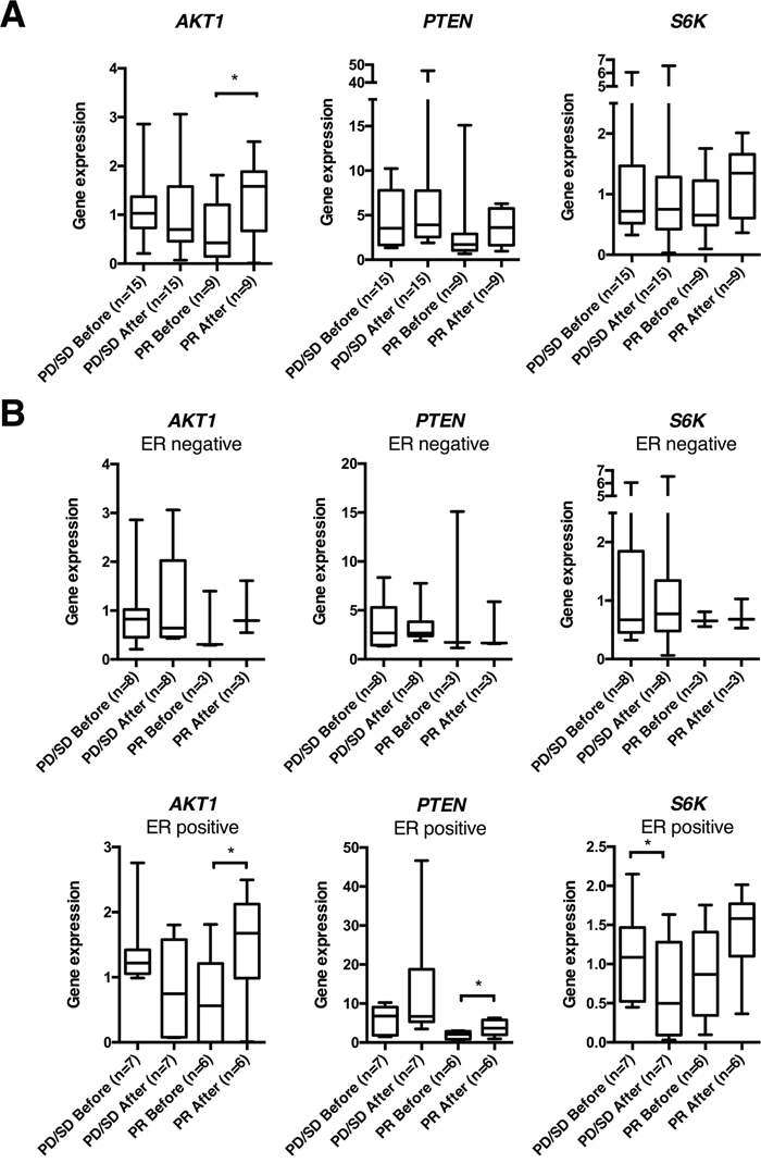 AKT1, PTEN and S6K gene expression in human breast cancers before and 24 hrs after epirubicin exposure.