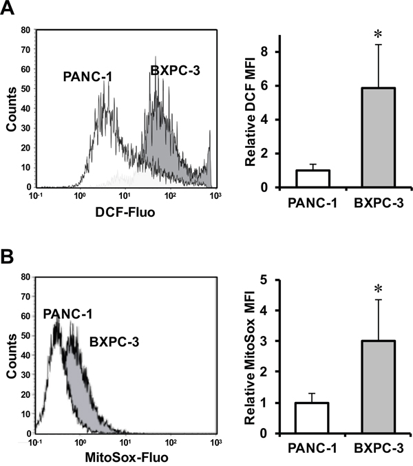 Evaluation of ROS production in PANC-1 and BXPC-3 cell lines.