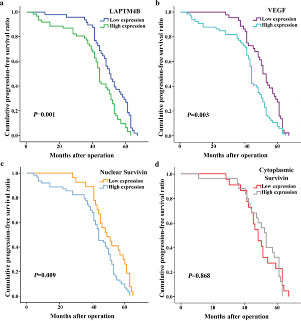 Kaplan-Meier curves for progression-free survival in 110 patients with breast cancer.