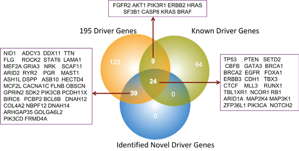 Overall comparisons between published and identified BRCA driver genes.