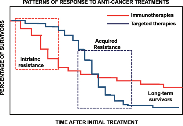 Immunotherapies and targeted therapies display distinct patterns of response.