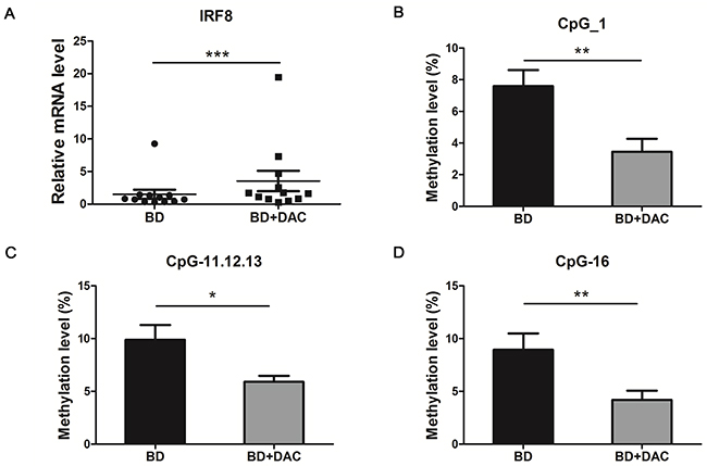 DAC treatment showed a demethylation effect and increased the mRNA expression of IRF8 in DCs from active BD patients.