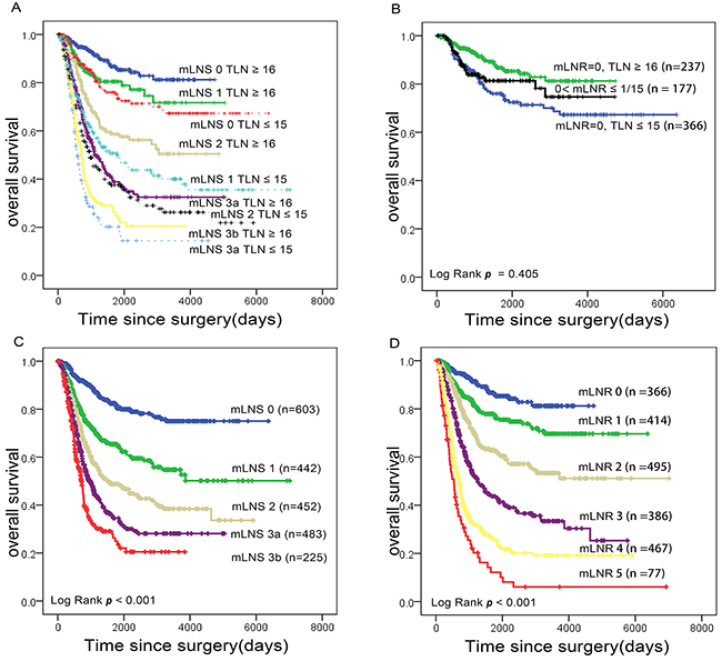 Impact of mLNS and mLNR staging on gastric cancer-related survival respectively.