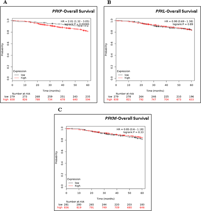 Kaplan-Meier Survival analysis of PFKP, PKFL, and PKFM in breast cancer patients.