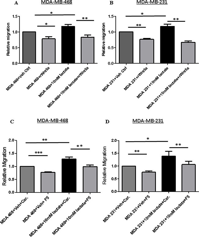 Lactate-induced migration of breast cancer cells impaired in MDA-MB-468 cells stimulated with rWNT5A or Foxy5.