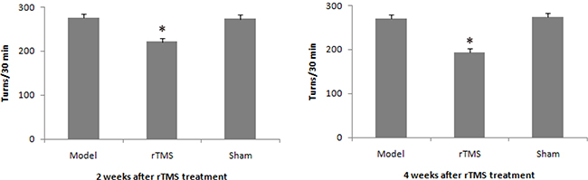 Effects of repetitive transcranial magnetic stimulation (rTMS) treatment on the apomorphine-induced turns in lactacystin-lesioned parkinsonian rats (n = 12).