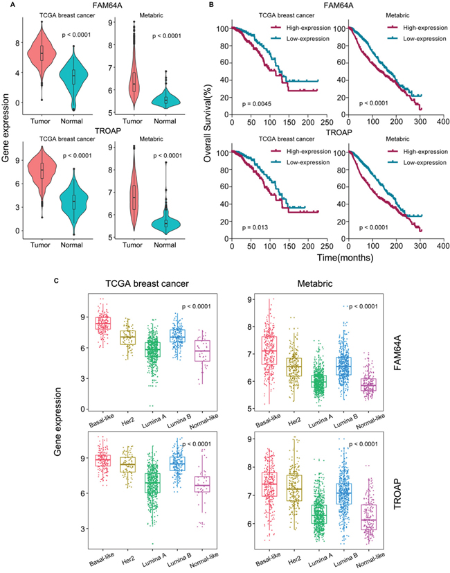 Analysis of pan-cancer genes FAM64A and TROAP.