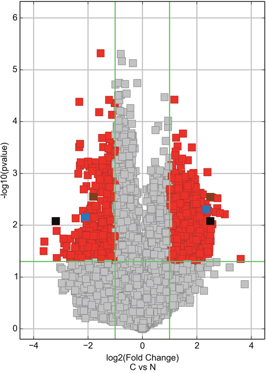 Volcano plot visualizing the differential expression of circRNAs between breast cancer and adjacent normal-appearing tissues.