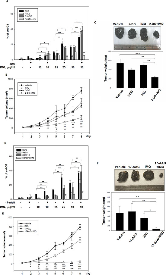 The combination of a pharmacological glycolytic inhibitor 2-DG or a Hsp90 inhibitor 17-AAG with IMQ significantly suppressed tumor growth in in vitro and in vivo.