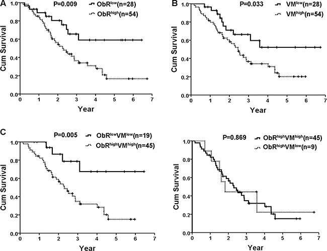 Kaplan–Meier statistical analysis showed prognostic significance of ObR expression and VM formation in human glioblastoma.