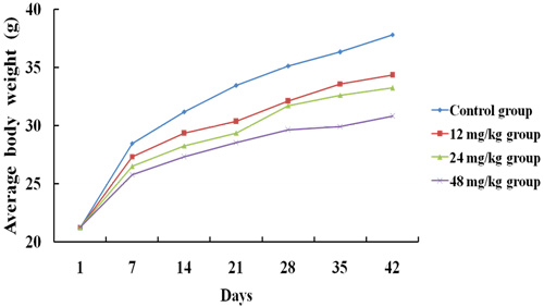 The average body weight of mice at 1, 7, 14, 21, 28, 35 and 42 days of the experimental.
