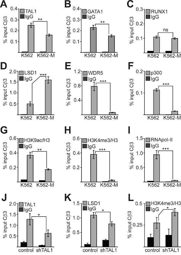 Changes at the Cβ3 promoter during megakaryocytic differentiation.